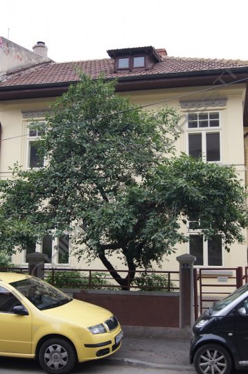 Cotroceni Gradina Botanica vila de inchiriat