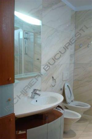 gru sanitar renovat apartament kiseleff